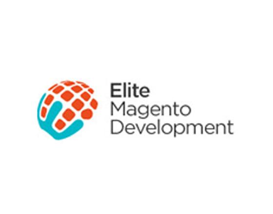 Custom Magento Website development Services