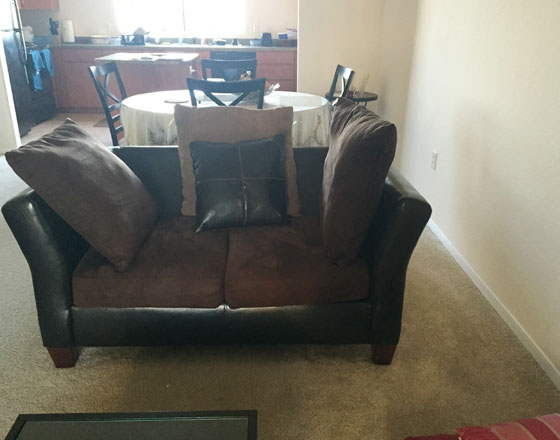 3 seater couch and 2 seater loveseat