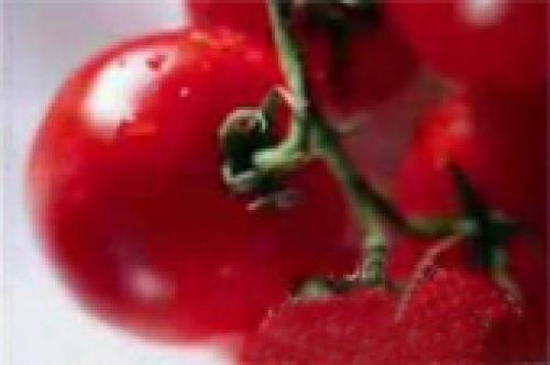 100 life saving health food tips