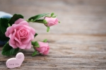 Mother's day, long distance mothers day gifts, 8 ways to send love to your mom on mother s day even when you are away from home, Good food