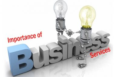 Business Service agency for NRIs