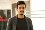 Akhil next film, Bhaskar, akhil s fourth film locked, Akhil akkineni