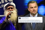 sadhguru, DiCaprio, civil society groups ask dicaprio to withdraw support for cauvery calling, Nawazuddin siddiqui