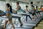 obese adults, best exercise to lose weight at home, exercise helps you lose weight says study, Cholesterol level