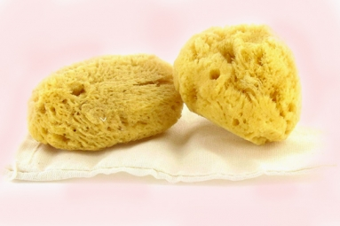 Gynecologist Warns Women Against Using Sea Sponges as 'Reusable', 'Nurturing' Alternatives to Tampons