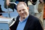 Harvey Weinstein found at Arizona restaurant, Harvey Weinstein found at Arizona restaurant, harvey weinstein spotted at arizona restaurant, Blonde