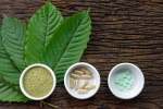 Pain Treating Herbal Supplement, herbal supplements, this pain treating herbal supplement is not safe for use, Disorders care