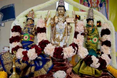 Thai Poosam Celebrations - Subramanya Swamy Kavadi Thiruvizha