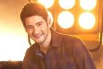 Sara Ali Khan, Sara Ali Khan, mahesh babu getting bollywood beauty for his next, Entertainment