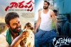 Naarappa and Love Story gearing up for theatrical release?