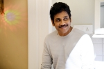 nagarjuna birthday wishes, najarjuna's top movies, nagarjuna turns 60 5 movies of forever young star you shouldn t miss, Nagarjuna