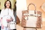 nita ambani's bag cost, Nita Ambani's Crocodile Skin Handbag, nita ambani s crocodile skin handbag worth rs 2 6 cr studded with 240 diamonds goes viral, Mukesh ambani