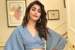 Sriram Venu, Pooja Hegde new film, pooja hegde in pink remake, Amitabh bachchan