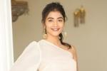 Pooja Hegde singer, Pooja Hegde singer, pooja hegde all set to turn singer, Film
