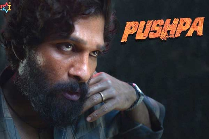 Pushpa to be released in two Installments?