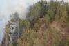 Rattlesnake Fire Burns 11,000 Acres Overnight Spreading Across Eastern Arizona