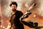 Sujeeth, Saaho news, saaho ten days telugu states collections, Jackie shroff