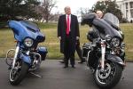Harley Davidson on US, harley davidson avoiding tariffs, donald trump slams india over 50 percent tariffs on harley davidson motorcycles, Narendra modi