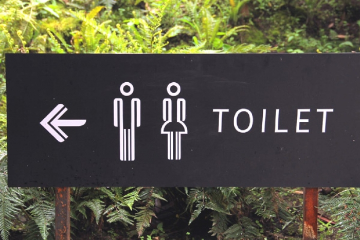 6 Things You Should Never Do in a Public Toilet
