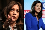 CNN's Democratic presidential debate, tulsi gabbard, tulsi gabbard seeks apology from kamala harris, Tulsi gabbard