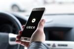 Uber Software Flaw Killed Arizona Woman, US Agency Confirms