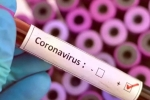 COVID-19 lockdown, Coronavirus may never go, who warns covid 19 may never go away then what s the future of the world, Great
