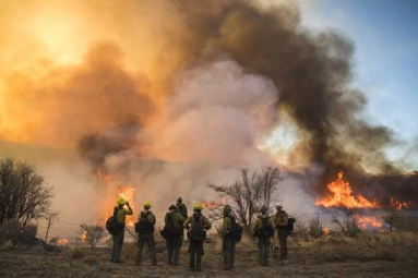 Wild Fire Spread across South East Arizona Gets In Control