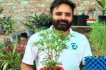 nitin lalit, nri nitin lalit, young nri entrepreneur returns to his native place with an intent to save water in gardening, Potted plants