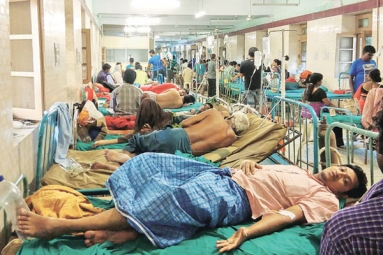 People with Low Iron Levels in Blood Likely to Transmit Dengue