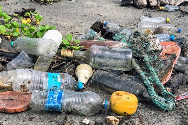 Indian-Origin Environmentalists Launch Campaign In UAE