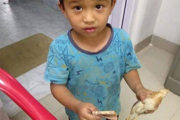 Mizoram Kid Accidentally Injures a Chick and Takes It to Hospital with All Money He Had