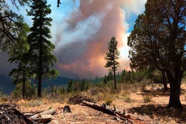 New wildfire in central Arizona Threatens buildings