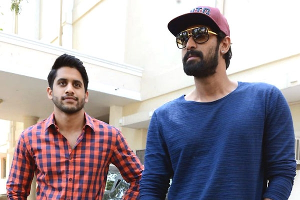 Rana And Naga Chaitanya In Talks For A Multi-Starrer
